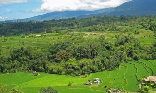 IndonesienBali Landschaft
